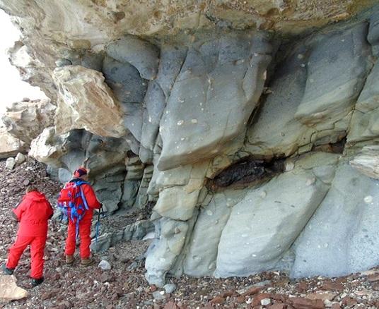 Encuentran los restos de un bosque de 250 millones de años en la Antártida 1421000835_1
