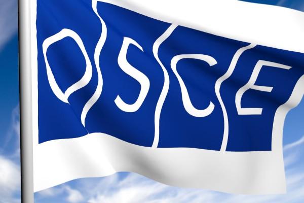 ОБСЕ представила отчет о вчерашнем бое в районе Марьинки