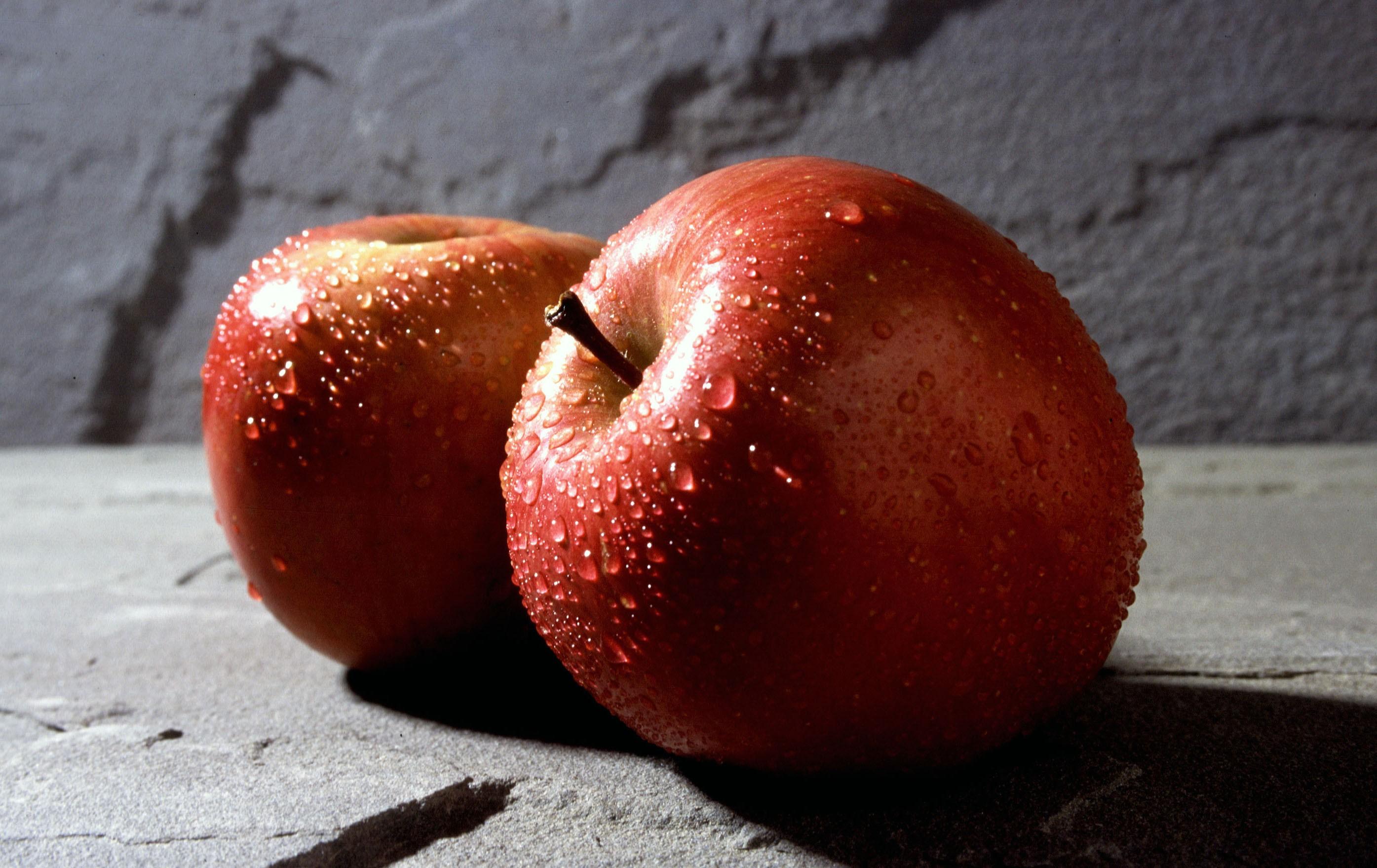 Яблоко от яблони часть 3 8 фотография