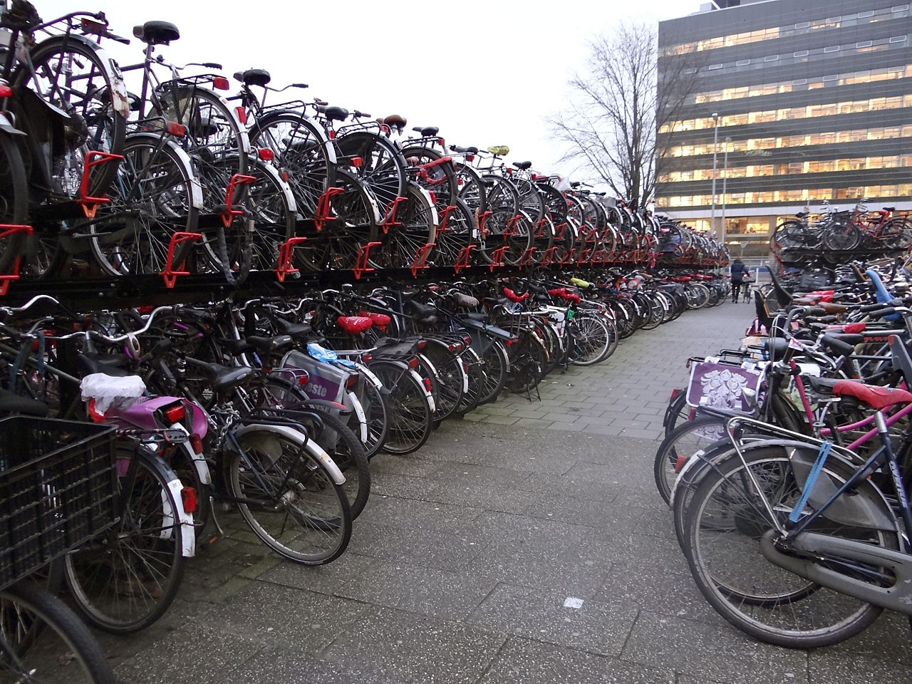 В Нидерландах будет построена самая большая в мире парковка для велосипедов