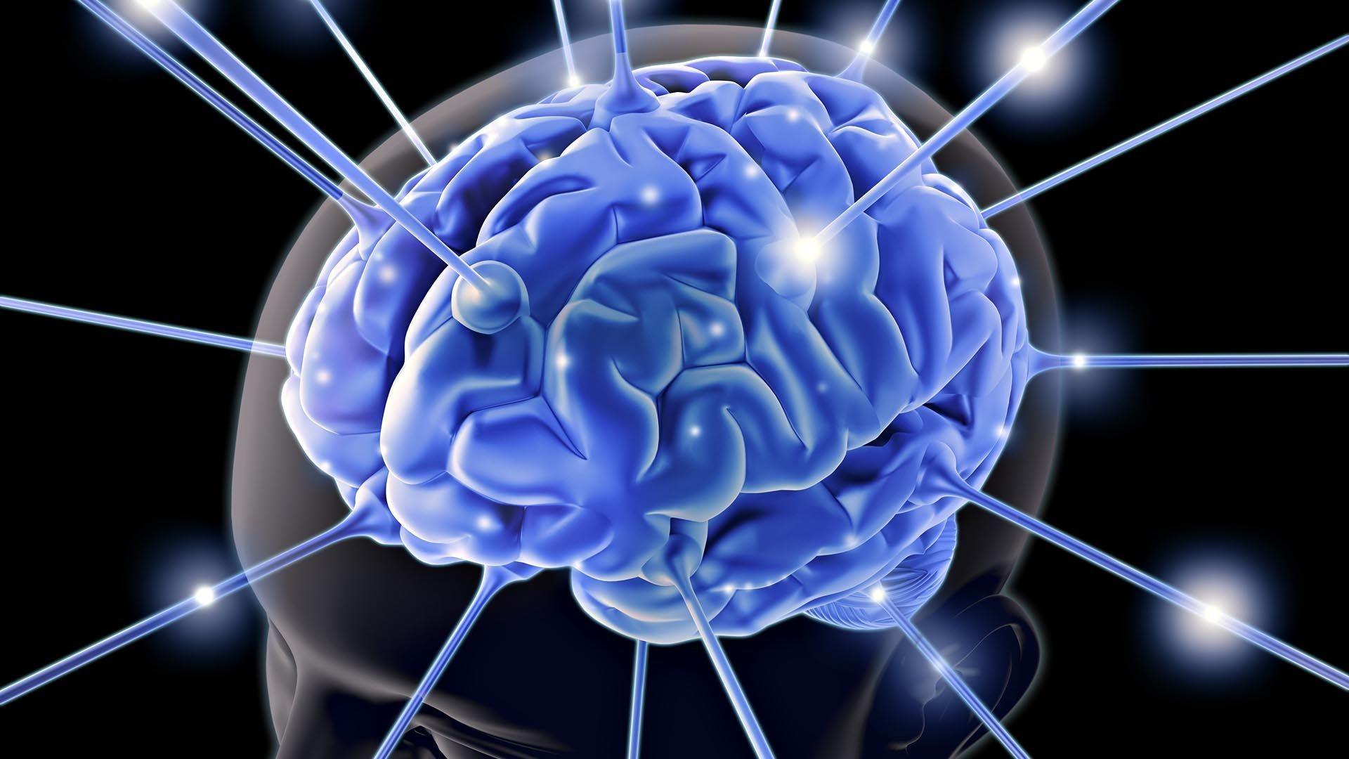 Нервные клетки восстанавливаются секс 24 фотография