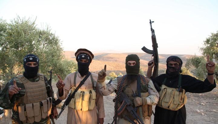 Турция вместе с США нанесут авиационные удары по ИГ