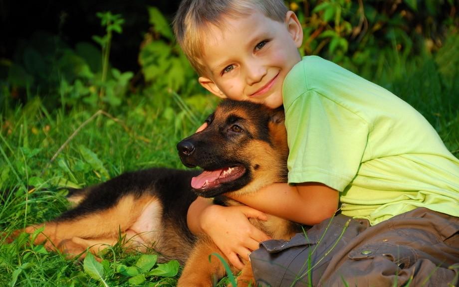 Ученые Домашние животные снизят вероятность развития астмы у детей