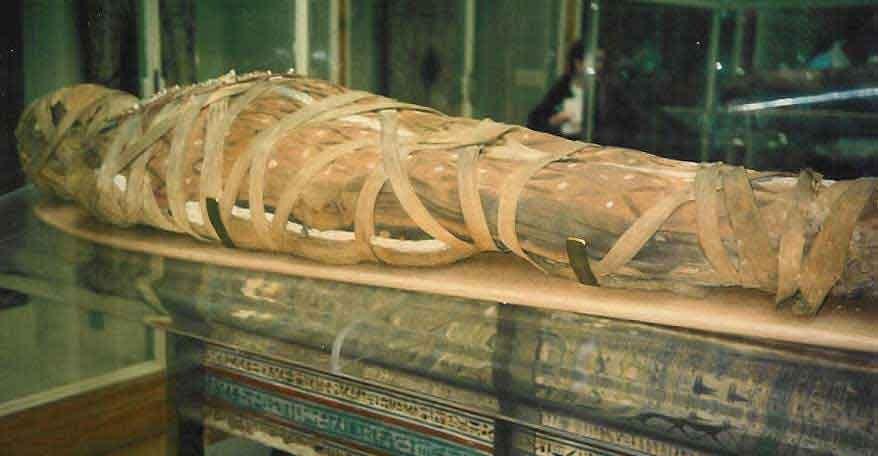 На аукционе в Бельгии обнаружили мумию пропавшую 40 лет назад