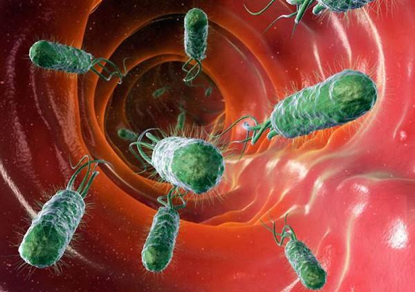 войска самые лучшие бактерии для пола помочь ребенку при