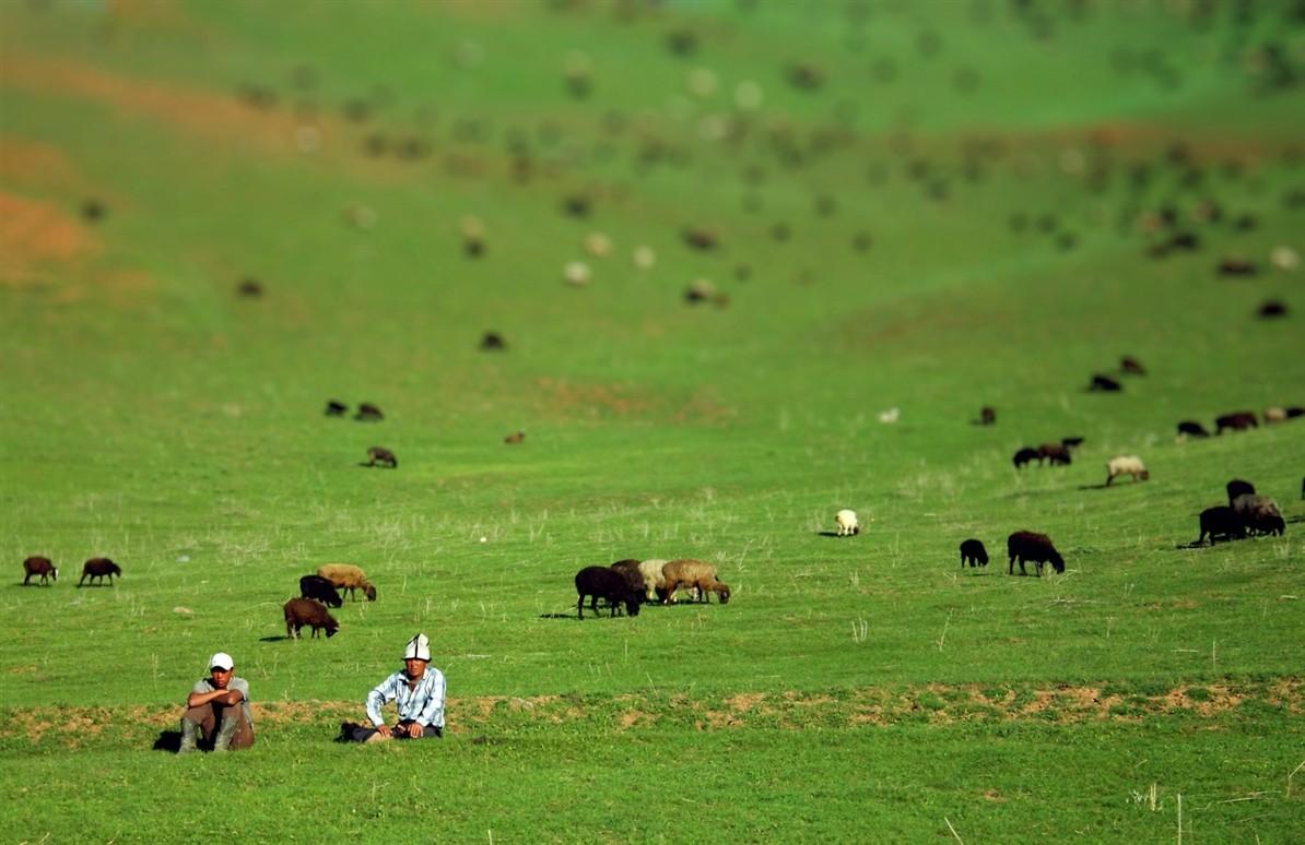 Смотреть порно австрийские пастушки онлайн 29 фотография