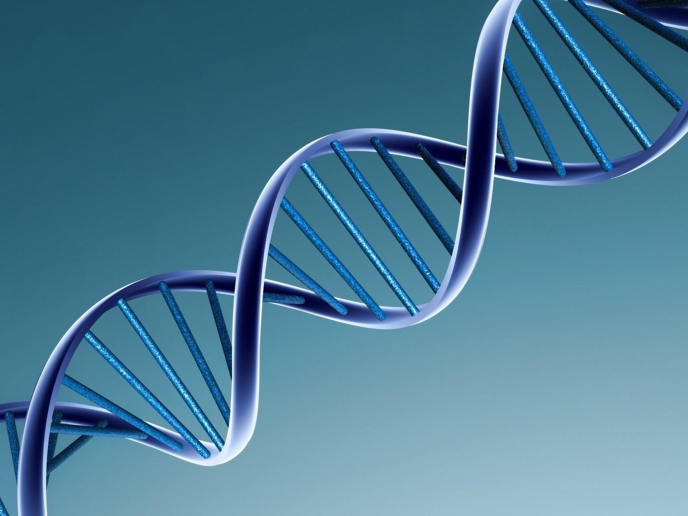 Ученые Наношприц позволит вводить ДНК в живые клетки
