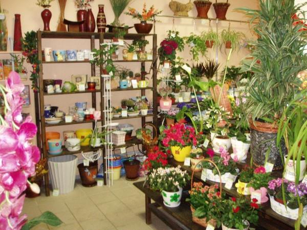 Сборка цветов на дому минск