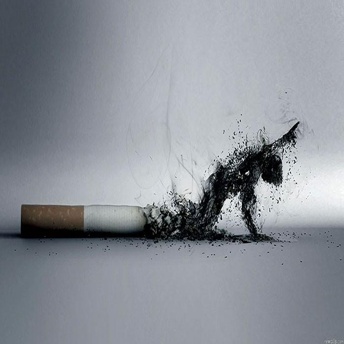 Курение провоцирует онкологию спервых секунд— ученые отследили процесс налюдях