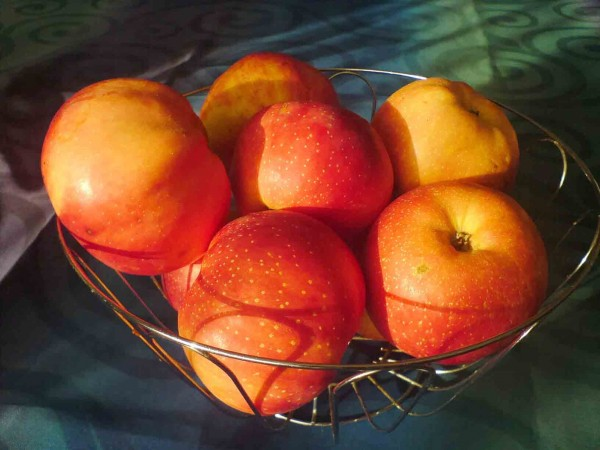 Одно яблоко в день на 35% снижает риск ранней смерти