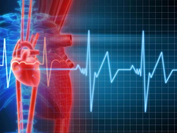 Ученые МФТИ научились управлять сердцебиением при помощи ультрафиолетового лазера