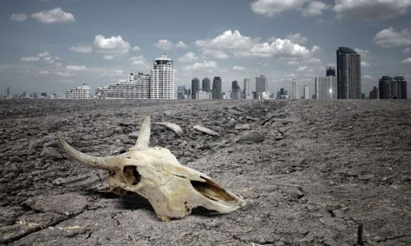 Ученые: Для остановки волны вымирания животных требуется улучшение баз данных