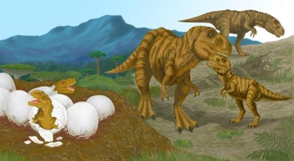Детеныши Титанозавров развивались почти моментально