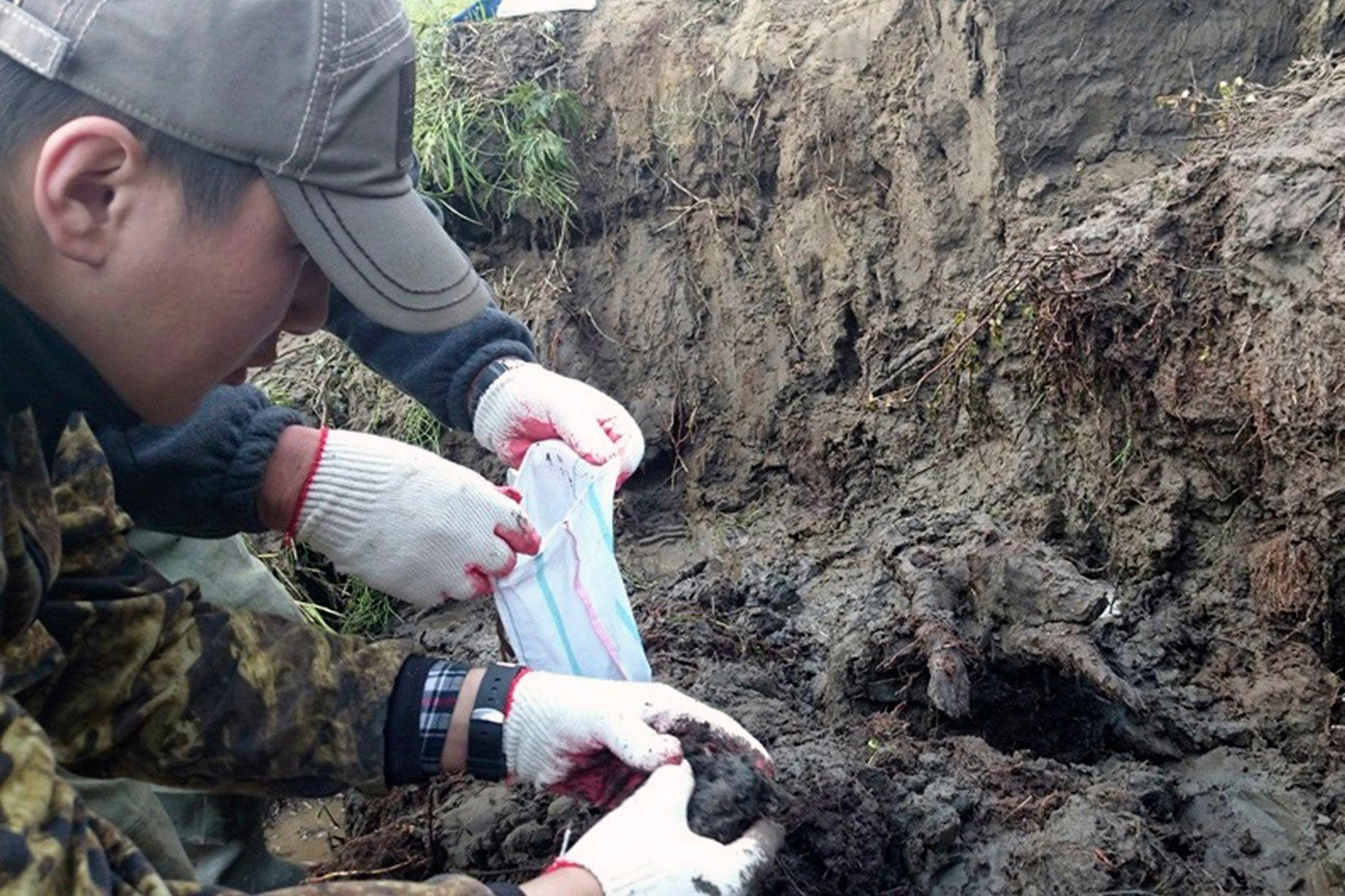Якутские ученые исследуют котловину состанками растений возрастом 120 тыс. лет