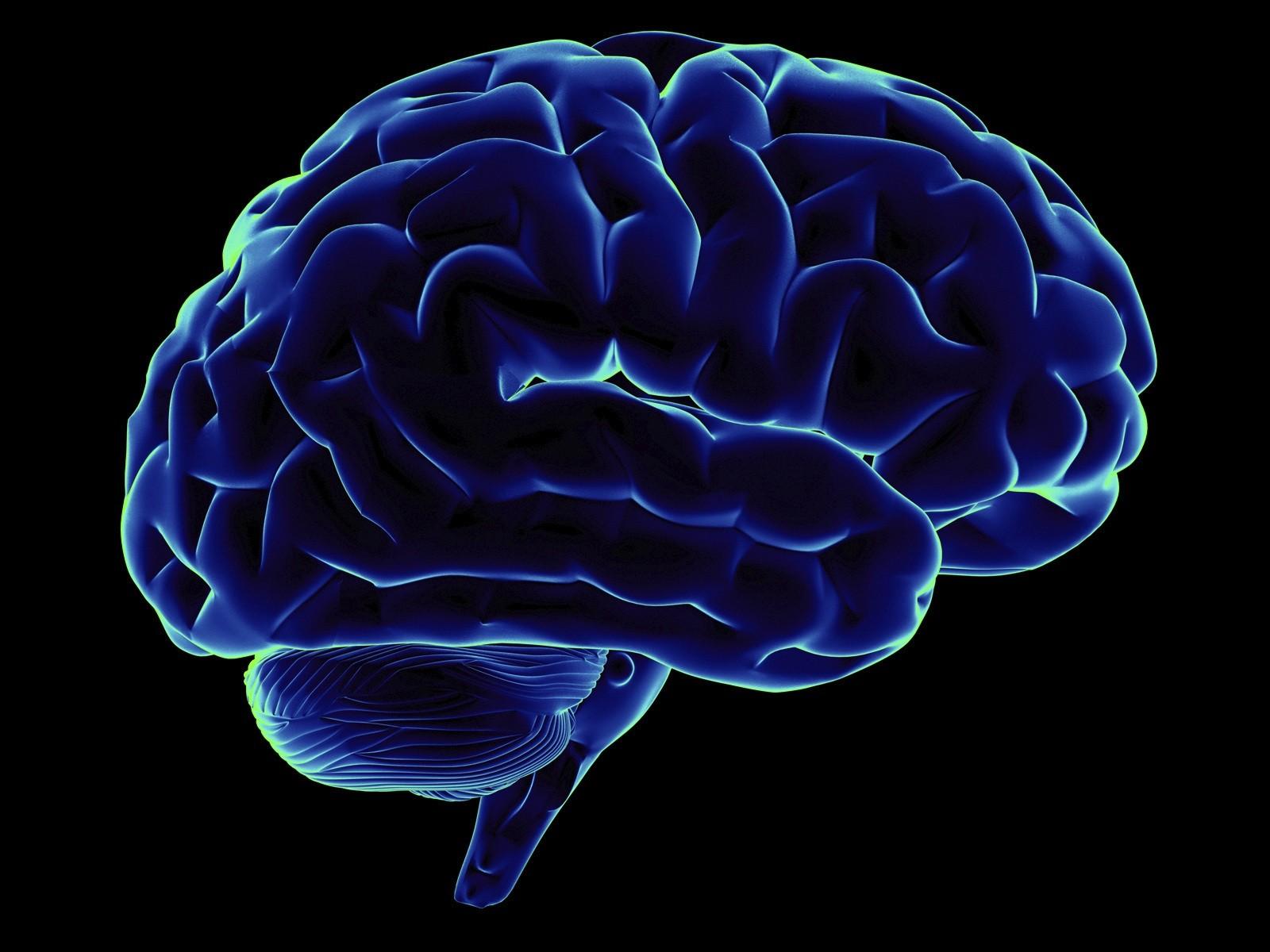 Американские учёные смогли создать машину для перевода мыслей вслова