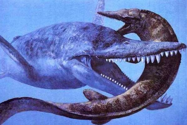 В Антарктиде обнаружены тонны окаменелостей динозавров
