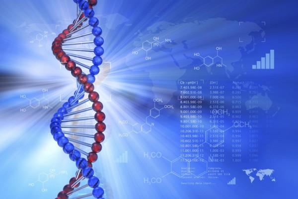 Ученые: Секрет успешной сдачи экзаменов раскрыт