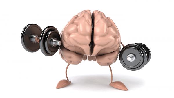 При ожирении возникают отложения в головном мозге