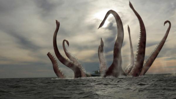 Ученые: На дне океана могут проживать кальмары-гиганты