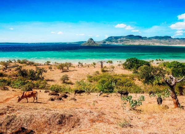 Ученые разгадали тайну заселения Мадагаскара
