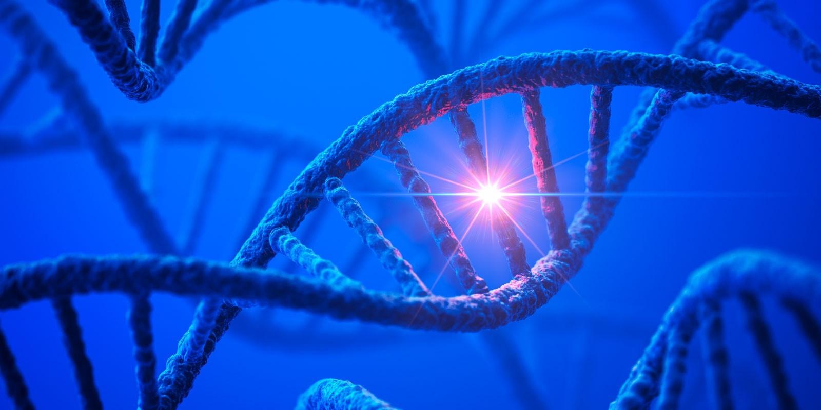 Российские ученые создали программу для быстрого анализа совокупности генов
