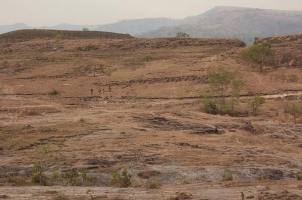 Ученые обнаружили в Индии следы динозавра, которому 150 млн лет