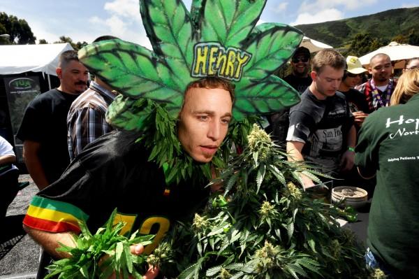 В США стремительно растут объемы продаж марихуаны