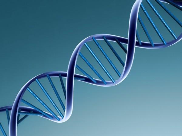 Американские ученые разработали чип, который позволит обнаружить мутации в ДНК