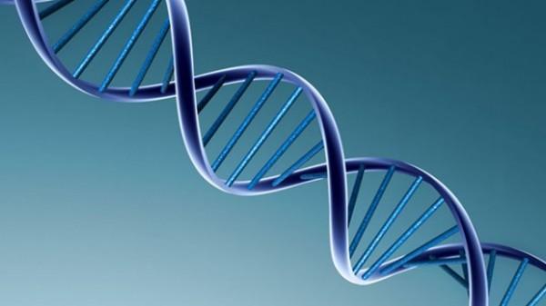 Для борьбы с онкологией в США разрешили редактировать геном человека