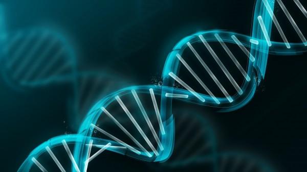 Ученые: Гены продолжают жить даже после смерти человека