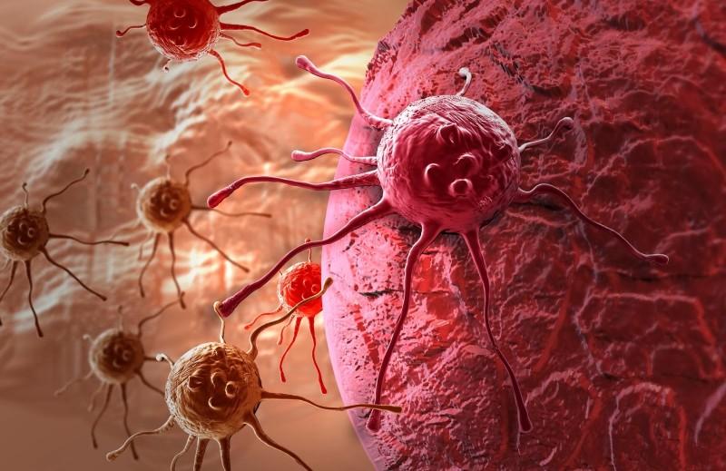 Ученые рассказали о распространении рака в организме человека