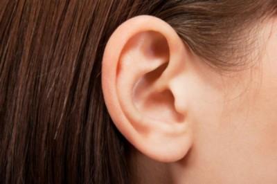 Учёный вырастил ухо человека из обычного яблока
