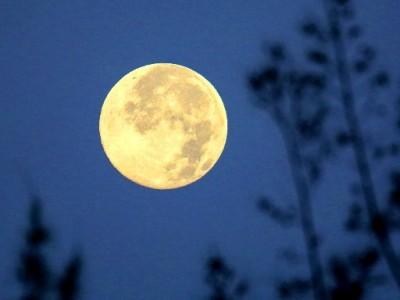База инопланетян замечена на обратной стороне Луны
