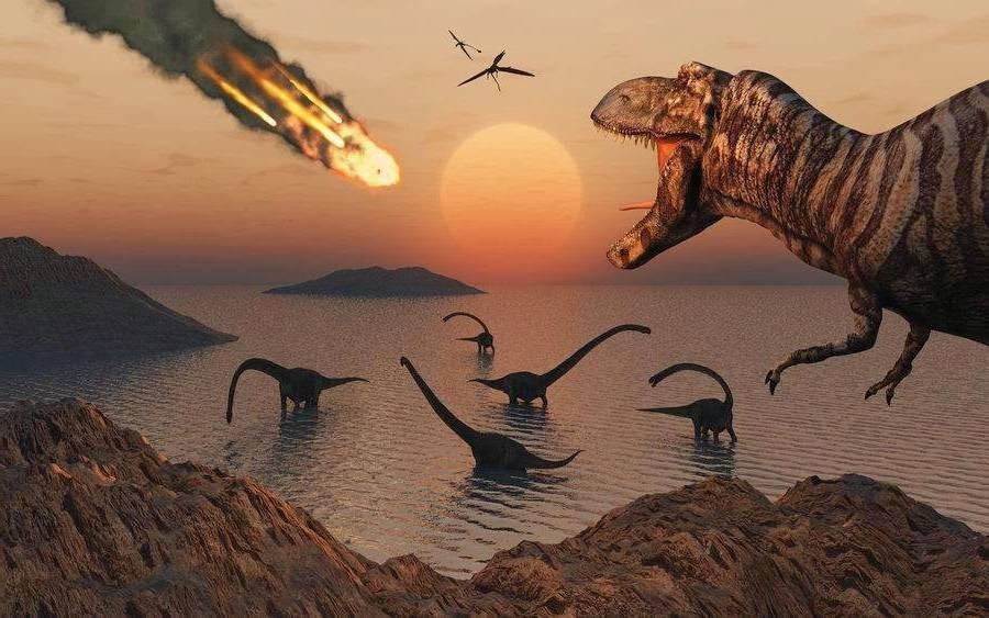 Раковины «рассказали» одвойном ударе, который уничтожил динозавров