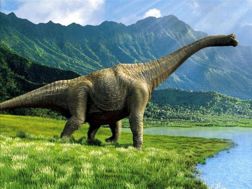 Динозавры ворковали икурлыкали