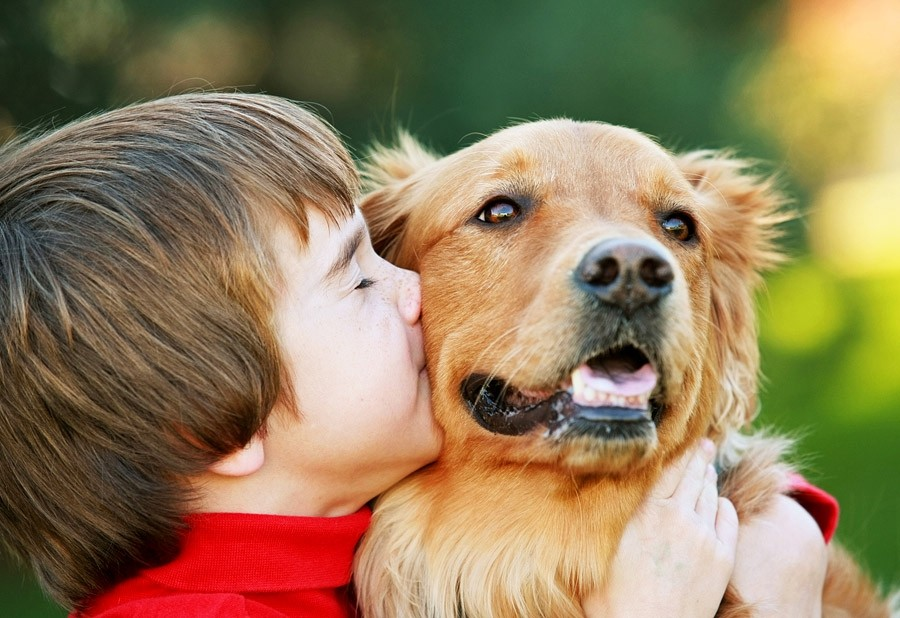 http://vistanews.ru/uploads/posts/2016-07/1469269322_b_0_650_00___images_article-dogs_article-dog-baby-5.jpg
