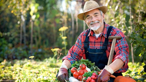Ученые: Работа в саду и огороде продлевает жизнь