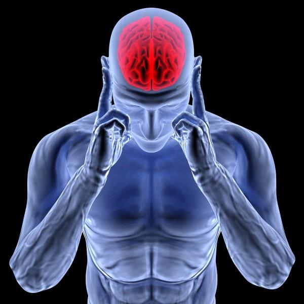 Памятные места сохраняются в головном мозге - Ученые