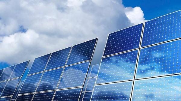 Ученые: Солнечные парки влияют на экологию