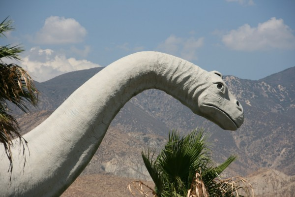 Ученые подтвердили успешность травоядных динозавров