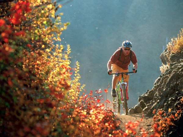 Ученые: Велосипед способен избавить от сахарного диабета
