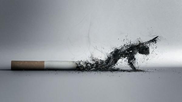 Ученые: Политики могли бы решить проблему курения
