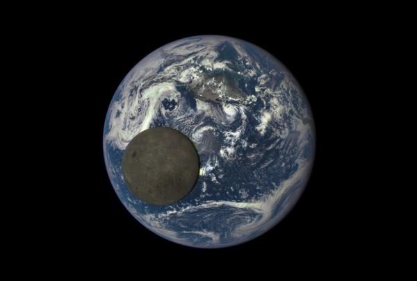 Снимок космонавта насмешил пользователей интернета