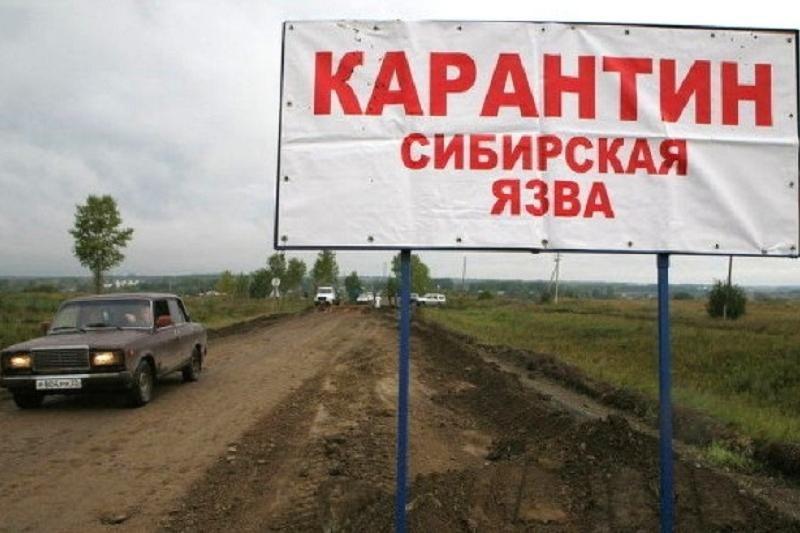 Роспотребнадзор Свердловской области защищает регион отсибирской язвы