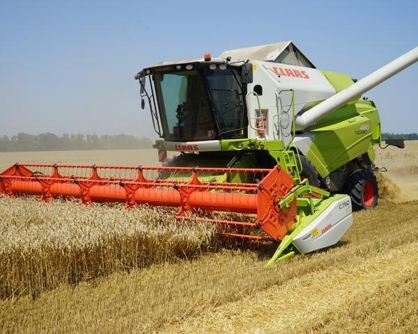 Минсельхоз рассчитывает навозобновление экспорта зерна вТурцию на прошлом уровне