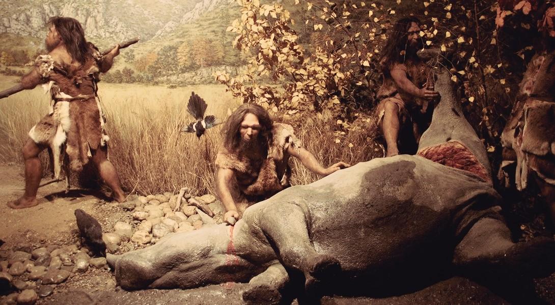 Пещерные люди были неравнодушны ксладкому