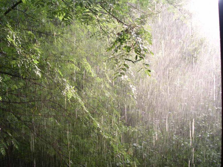 ВАрмавире ливень иветер лишили электричества 170 тыс человек