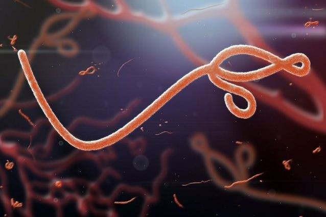 ВЧехии злоумышленники пытались распространить вирус Эболы