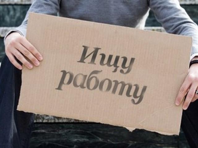 Уровень безработицы всередине лета снизился до5,3%