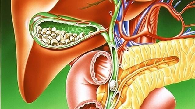 Профессионалы узнали, что увеличивает развитие сердечно-сосудистых заболеваний в4 раза